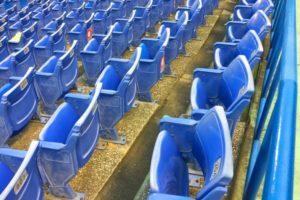 神宮球場の青いシート