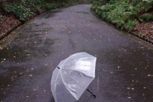 濡れた傘と小道