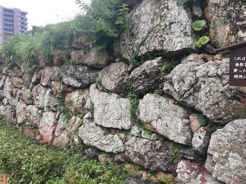 浜松城の石垣「野面積み」