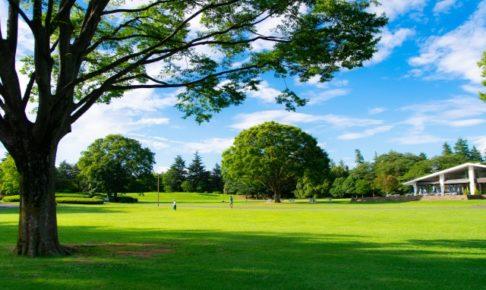 昭和記念公園の芝生
