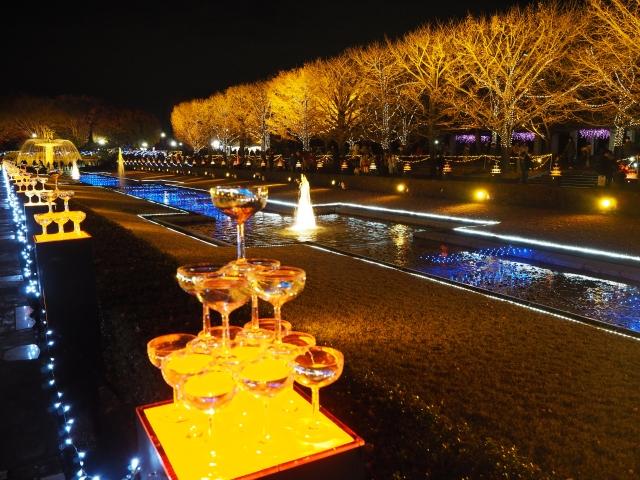 昭和記念公園イルミネーション01