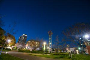 夜景が見える公園