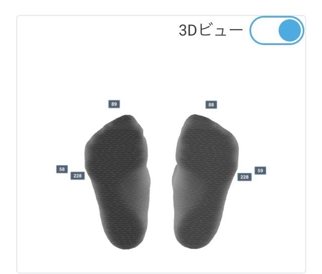 ゼビオ足型測定3D-2